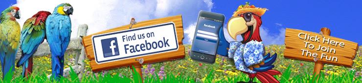 facebook-parrot-palooza