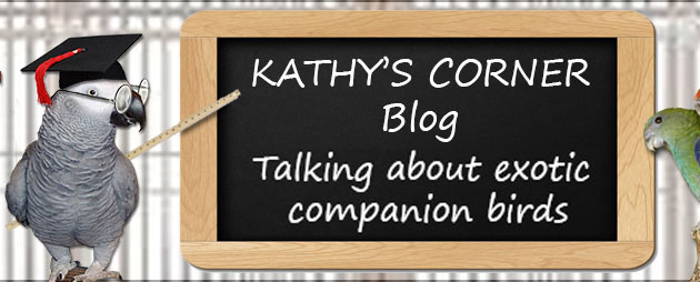 Kathy's corner parrot care blog