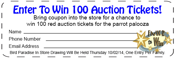 100-instore-drawing-auctio--tickets