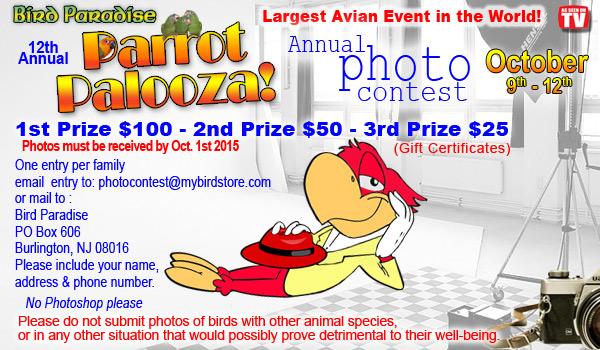 Palooza-photo-contest-2015
