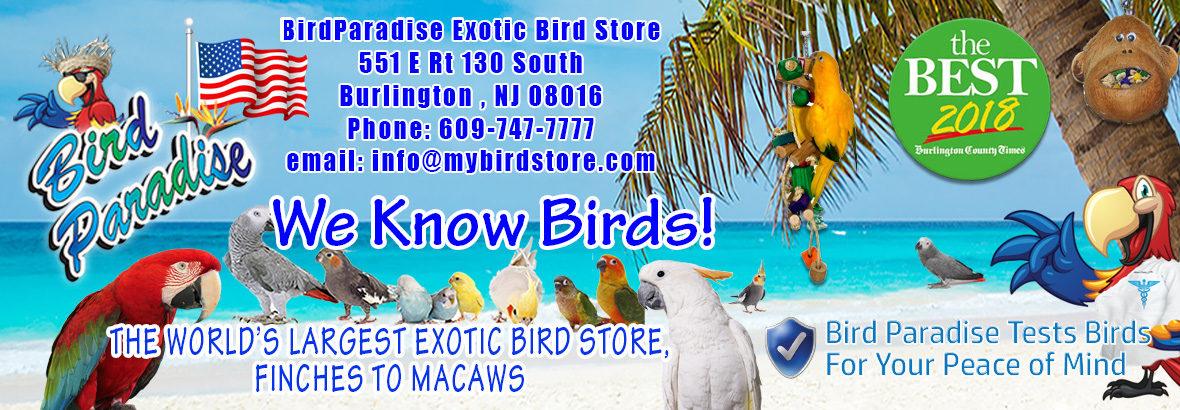 Exotic Bird Paradise - Pet Bird Supplies - birdparadise biz -