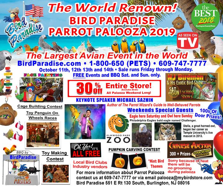 2019 parrot Palooza